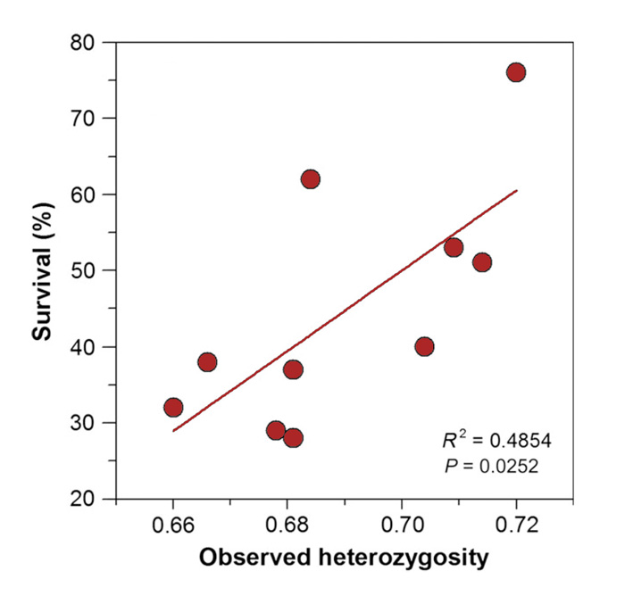 an analysis of the observed heterozygosity National academy of sciences contact loss of heterozygosity, and dna sequence analysis of the observed congruent pattern of comparative genomic.
